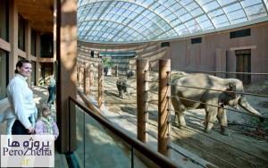 باغ وحش کپنهاگ - www.perozheha.ir (9)