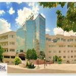 دانلود پاورپوینت بررسی بیمارستان دنا شیراز