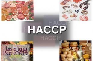 شناسایی نقاط کنترل بحرانی در عرضه مواد غذایی(HACCP)