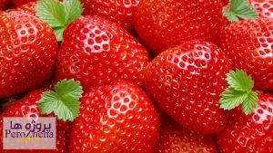 گیاه توت فرنگی