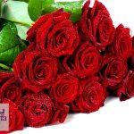 دانلود پــاورپـویـنت گل رز