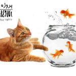 دانلود پاورپوینت استرس در ماهی