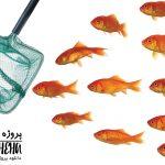 دانلود پاورپوینت اثر یادگیری بر رفتار ماهی